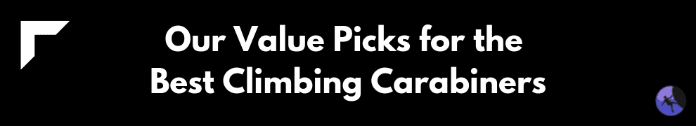Our Value Picks for the Best Climbing Carabiners