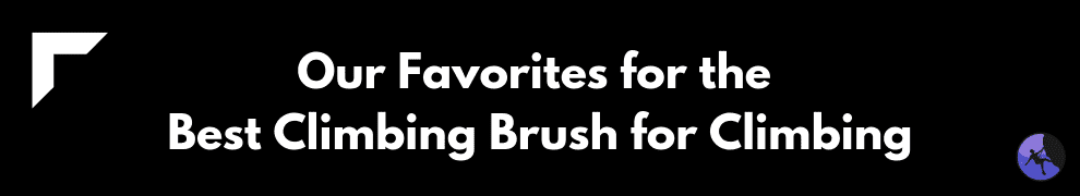 Our Favorites for the Best Climbing Brush for Climbing
