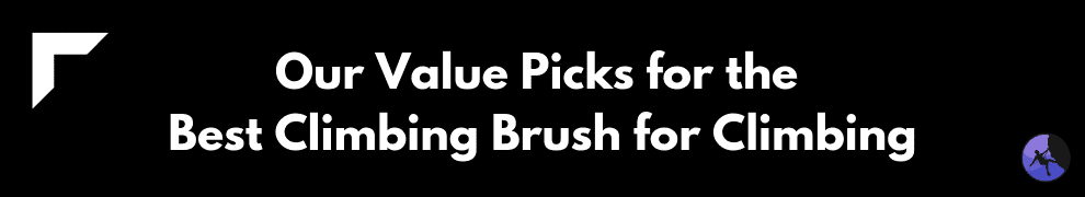 Our Value Picks for the Best Climbing Brush for Climbing
