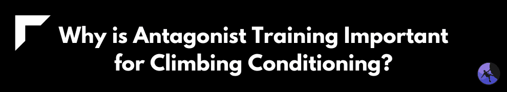 Why is Antagonist Training Important for Climbing Conditioning?